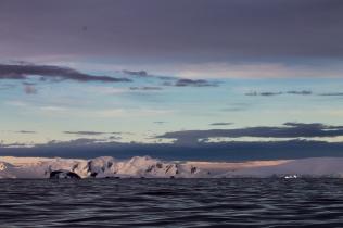 Antarctique dec 2016-2-3