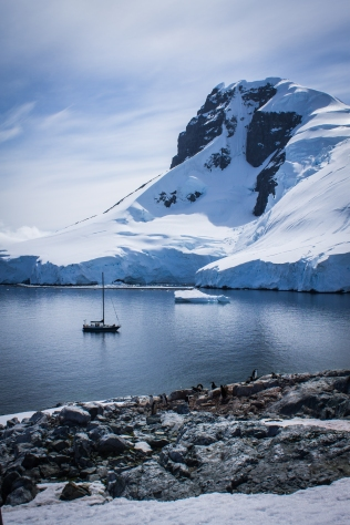 Antarctique dec 2016-6-4