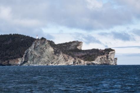 Gaspé Terre-Neuve croisière LifeSong Sailing-2