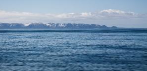Gaspé Terre-Neuve croisière LifeSong Sailing-7