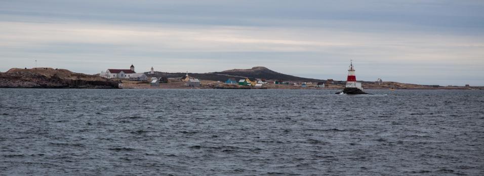 Gaspé Terre Neuve croisière LifeSong Sailing-9