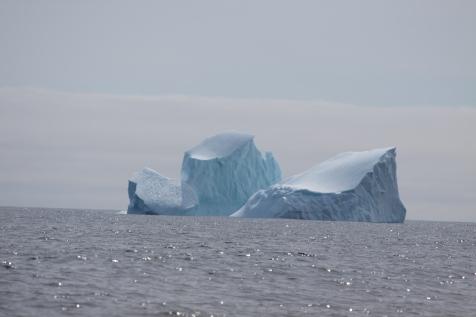 Gaspé Terre Neuve croisière LifeSong Sailing-59