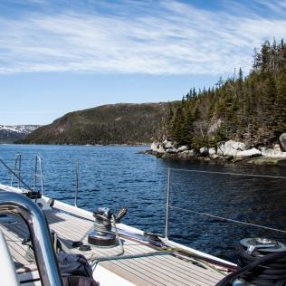 Terre-Neuve croisière LifeSong Sailing