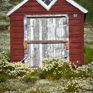 La beauté des maisons de bois
